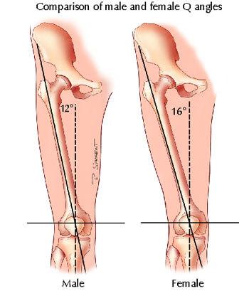 Angle Q genou hanche homme/femme