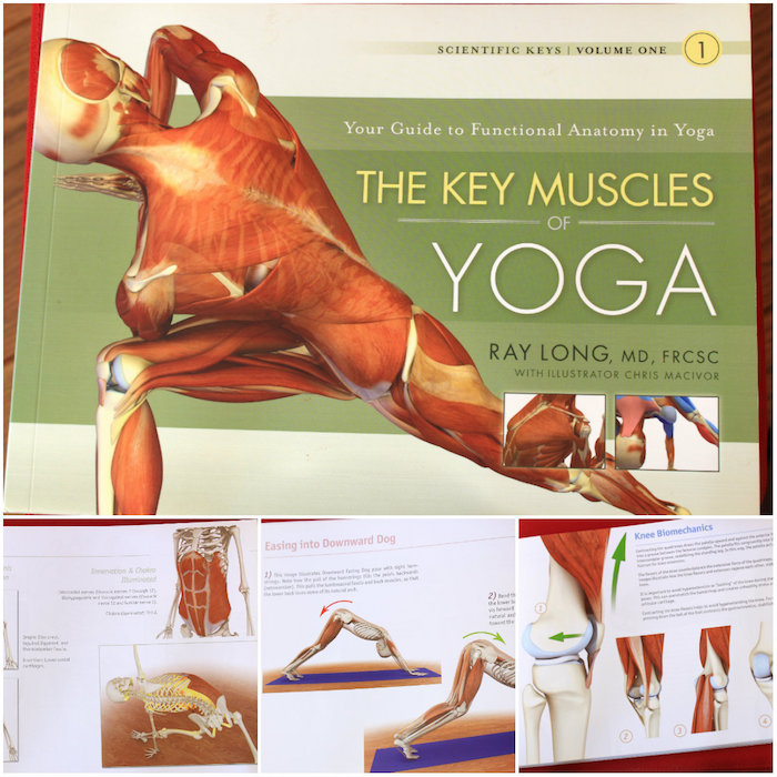 Livre The key muscles of yoga
